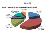 Report finale Progetto NIMBL su Aicardi-Goutieres syndrome